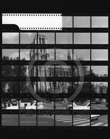 Cathédrale Notre-Dame. Paris, 1989.