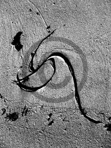Alphabet de mer. Iphoneographie, 2009.