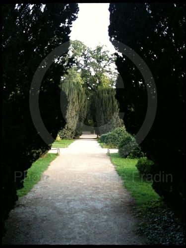 Jardin des Plantes, 2011.
